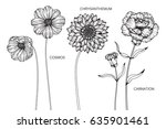 collection of cosmos  carnation ... | Shutterstock .eps vector #635901461
