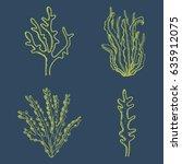 green algae and corals. vector... | Shutterstock .eps vector #635912075
