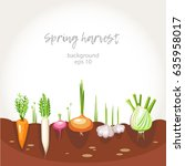 harvest vegetables garden bed... | Shutterstock .eps vector #635958017
