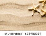 Summer Background   Starfish O...