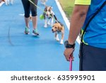 People With Pets Exercising...