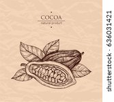 hand drawn illustration cocoa.... | Shutterstock .eps vector #636031421