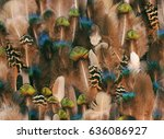 colorful bird feather bohemian... | Shutterstock . vector #636086927