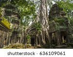 Small photo of Roots of a strangler fig tree overtake the stone structure of Ta Prohm, in the crumbling temple complex of Angkor Wat, Cambodia