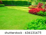 green grass with the sun in the ... | Shutterstock . vector #636131675