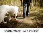 a day trip of the owner with... | Shutterstock . vector #636140159