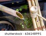 japanese tsukubai | Shutterstock . vector #636148991