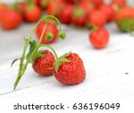 real organic strawberry  look... | Shutterstock . vector #636196049
