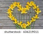 Heart From The Yellow Daffodil...
