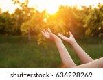 human hands open palm up... | Shutterstock . vector #636228269