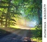 gravel road in a misty foggy... | Shutterstock . vector #636326579