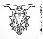 hand drawn antique insect...   Shutterstock .eps vector #636434615