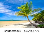 tropical sand beach palm... | Shutterstock . vector #636464771
