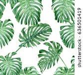 monstera leaves. seamless... | Shutterstock . vector #636501419