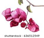 Watercolor Flowers Pink...