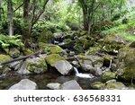 tropical forest stream  stones... | Shutterstock . vector #636568331