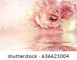 roses background | Shutterstock . vector #636621004