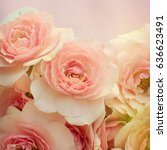 roses background | Shutterstock . vector #636623491