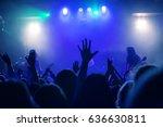 dancing audience at concert at