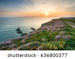 sunset over cliffs carpeted... | Shutterstock . vector #636800377