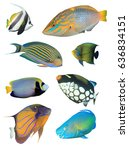 Collection Of Tropical Reef...