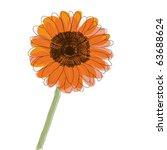 Orange Gerbera Daisy Flower ...