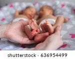 mother holding premature twins... | Shutterstock . vector #636954499