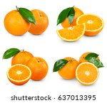 orange fruits collection... | Shutterstock . vector #637013395
