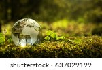 Small photo of Environment conservation concept. Close up of glass globe in the forest with copy space
