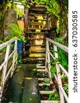 small bridge and wood floor... | Shutterstock . vector #637030585