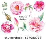 hand painted floral elements... | Shutterstock . vector #637080739