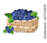 wicker basket with blueberries...   Shutterstock .eps vector #637118245
