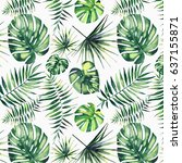 bright beautiful green herbal...   Shutterstock . vector #637155871