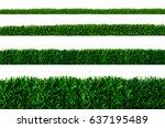 grass isolated on white... | Shutterstock . vector #637195489