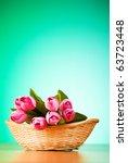 bunch of tulip flowers on the... | Shutterstock . vector #63723448