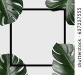 monstera leafs background   Shutterstock . vector #637237555