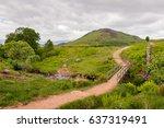 walking path in scotland   the... | Shutterstock . vector #637319491