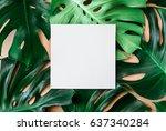 monstera leaves template ... | Shutterstock . vector #637340284