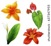 Stock photo tropical garden flowers drawing anthurium and daylily 637347955