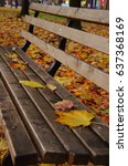 Small photo of a bench and a few yellowish orangish fallen Autumn Leaves