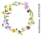 watercolor wreath with field... | Shutterstock . vector #637374139