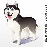 Siberian Husky Dog. Black And...