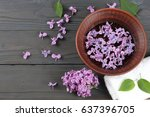 spa lilac flower in water on... | Shutterstock . vector #637396705