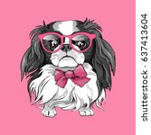 Stock vector japanese chin dog in a glasses and tie on a pink background vector illustration 637413604