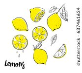 Vector Hand Drawn Lemon....