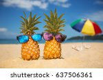couple of attractive pineapples ... | Shutterstock . vector #637506361