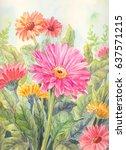 garden flowers background in...   Shutterstock . vector #637571215