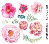 hand painted floral elements... | Shutterstock . vector #637723405