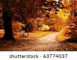 Nice Forest   Autumn