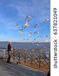 Small photo of SCOTLAND, VIRGINIA - FEBRUARY 20 2017: Man feeding ring-billed seagulls from the aft deck of the Jamestown-Scotland Ferry boat Pocahontas. This historic car ferry has been in operation since 1925.